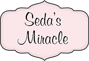Seda's Miracle