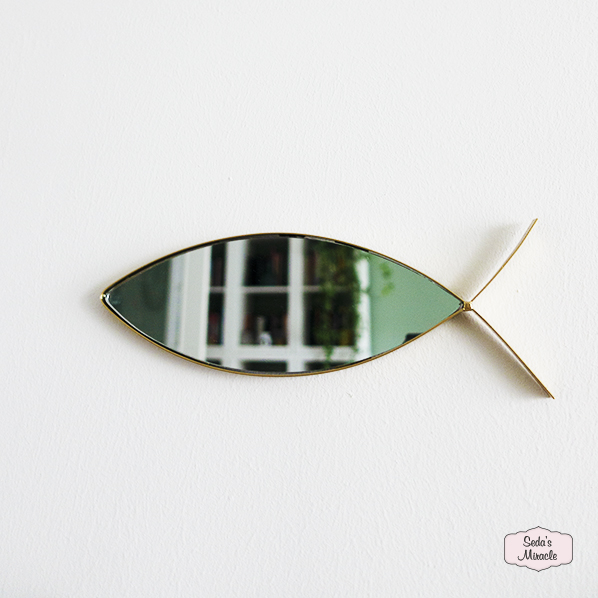 Vis spiegeltje